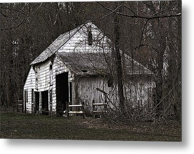 Haunted  Metal Print by Lanis Rossi