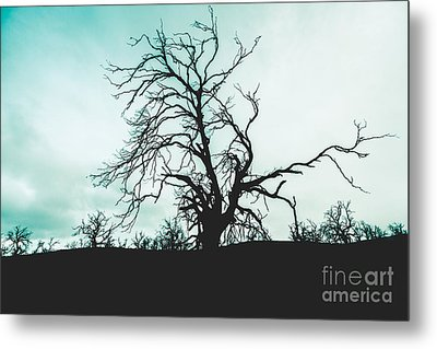 Haunted Wasteland Metal Print by Jorgo Photography - Wall Art Gallery
