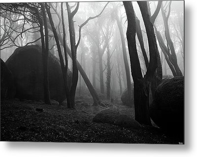 Metal Print featuring the photograph Haunted Woods by Jorge Maia