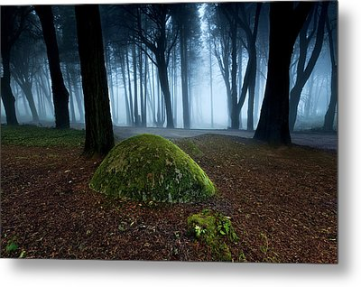 Metal Print featuring the photograph Haunting by Jorge Maia