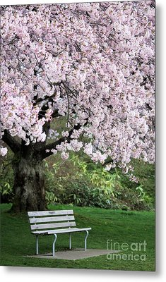 Metal Print featuring the photograph Have A Seat by Victor K