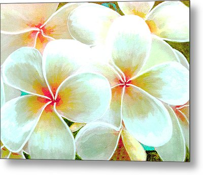 Hawaii Plumeria Frangipani Flowers #86 Metal Print by Donald k Hall