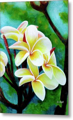 Hawaii Tropical Plumeria Flower #225 Metal Print by Donald k Hall