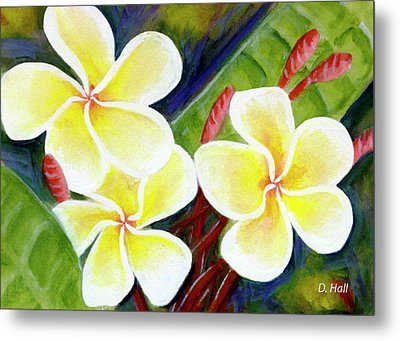 Hawaii Tropical Plumeria Flower #298, Metal Print by Donald k Hall