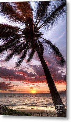 Hawaiian Coconut Palm Sunset Metal Print
