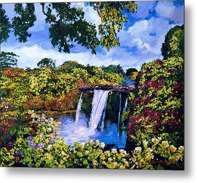 Hawaiian Paradise Falls Metal Print by David Lloyd Glover