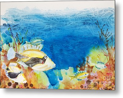 Hawaiian Triggerfish Metal Print by Tanya L Haynes - Printscapes