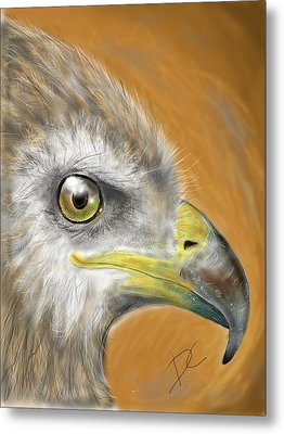 Metal Print featuring the digital art Hawk by Darren Cannell