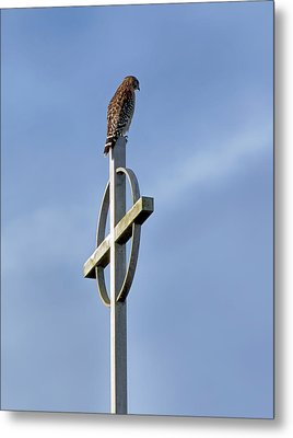 Metal Print featuring the photograph Hawk On Steeple by Richard Rizzo