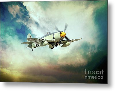 Hawker Sea Fury Metal Print