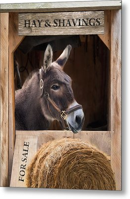 Metal Print featuring the photograph Hay And Shavings by Robin-Lee Vieira