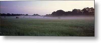 Hay Bales In A Field, Texas, Usa Metal Print by Panoramic Images