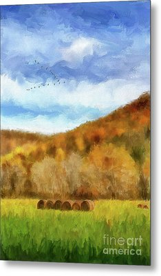 Metal Print featuring the photograph Hay Bales by Lois Bryan