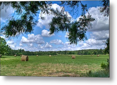 Hay Field In Summertime Metal Print by Douglas Barnett