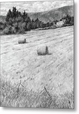 Hay Harvest Metal Print by David King