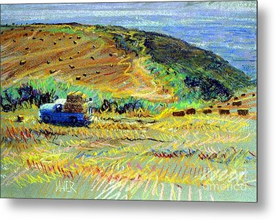 Hay Harvest On The Coast Metal Print by Donald Maier