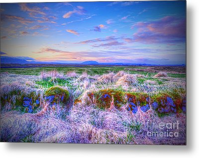 Hayfield Near Selfoss Iceland Metal Print by Jack Torcello