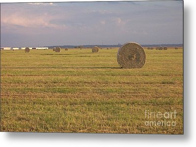 Hayfield Perspective Metal Print