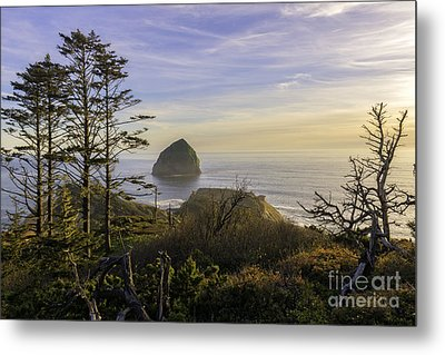 Haystack Rock At Evening's Calm Metal Print by Moore Northwest Images