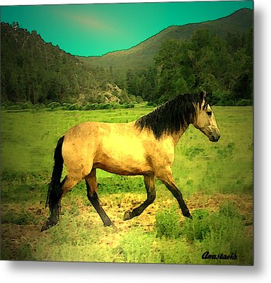 He Paweth In The Valley And Rejoiceth In His Strength  Metal Print by Anastasia Savage Ealy