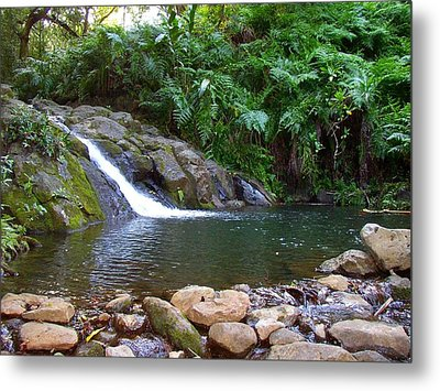 Healing Pool - Maui Hawaii Metal Print