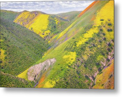 Metal Print featuring the photograph Heart Of The Temblor Range by Marc Crumpler