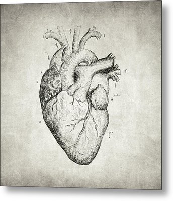 Metal Print featuring the drawing Heart by Taylan Apukovska