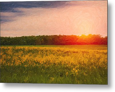 Heartland Glow Metal Print by Tom Mc Nemar