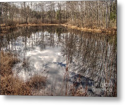 Metal Print featuring the photograph Heaven Below by Betsy Zimmerli