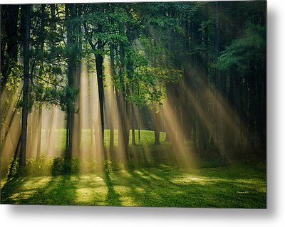 Metal Print featuring the photograph Heavenly Light Sunrise by Christina Rollo