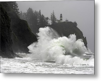 Heavy Disappointment Metal Print by Moore Northwest Images