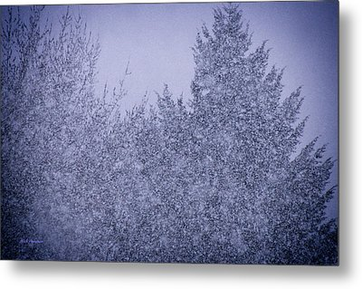 Heavy Snow Metal Print by Mick Anderson