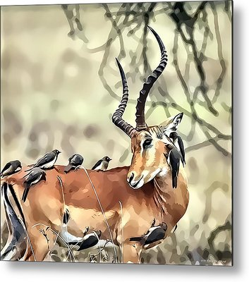 Metal Print featuring the photograph Hello Deer by Kathy Tarochione