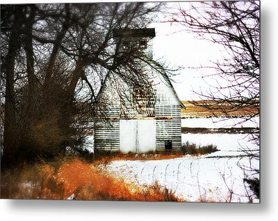 Hello There Metal Print by Julie Hamilton