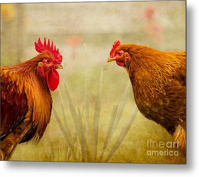 Hen Party Do You Come Here Often Metal Print