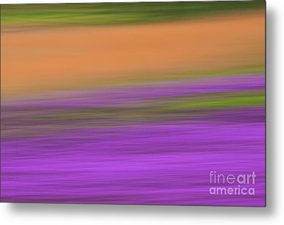 Metal Print featuring the photograph Henbit Abstract - D010049 by Daniel Dempster