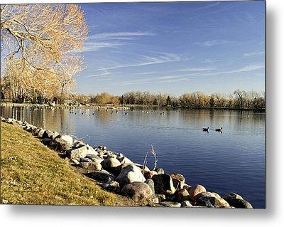 Henderson Lake Waiting For Winter Metal Print