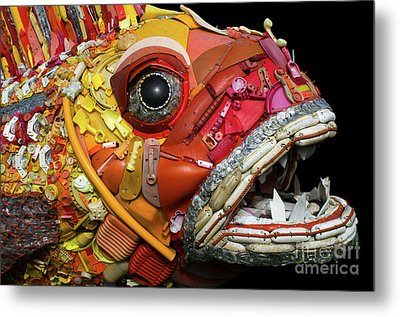 Henry The Fish 2 Metal Print by Bob Christopher