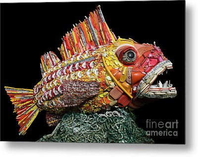 Henry The Fish Metal Print by Bob Christopher