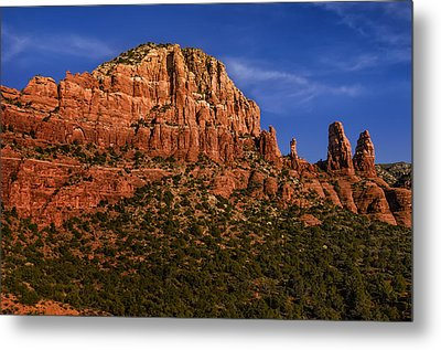 Her Majesty Metal Print by Mark Myhaver