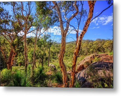 Heritage View, John Forest National Park Metal Print