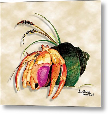 Metal Print featuring the painting Hermit Crab In Green Shell by Anne Beverley-Stamps