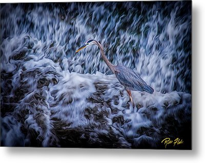 Metal Print featuring the photograph Heron Falls by Rikk Flohr