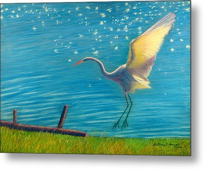 Metal Print featuring the pastel Heron Great White   Pastel   by Antonia Citrino