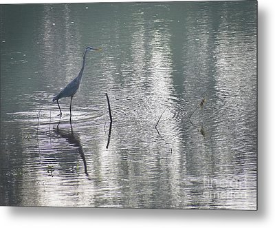 Metal Print featuring the photograph Heron In Pastel Waters by Skip Willits
