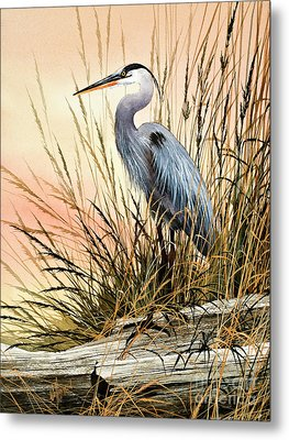 Heron Sunset Metal Print