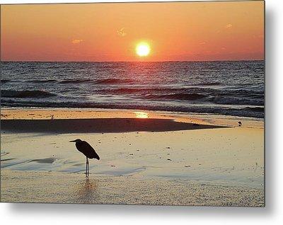 Heron Watching Sunrise Metal Print by Michael Thomas
