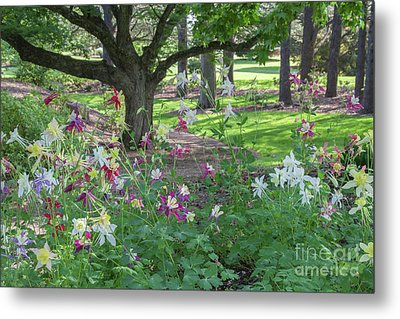 Metal Print featuring the photograph Hershey Gardens 1 by Chris Scroggins
