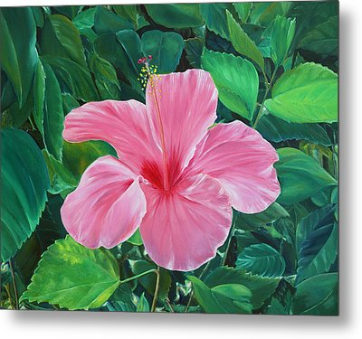 Metal Print featuring the painting Hibiscus by Elizabeth Lock