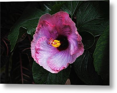Hibiscus Flower Metal Print by Tom Mc Nemar